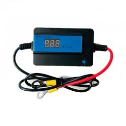 Desolfatatore Rivitalizzatore per Batterie Acido Gel AGM 4A [UBD1]